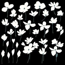 印象的で抽象的な花素材,