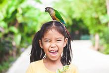 Beautiful Little Parrot Birds ...