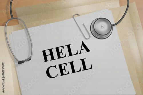 Photo HELA CELL concept
