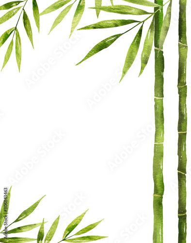 Watercolor vector bamboo stem with green leaves and copy space. Fototapeta