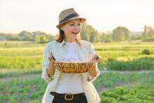 Mature Beautiful Woman Farmer ...