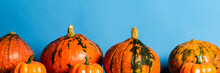 Ripe Pumpkins On A Blue Background. Harvest Concept, Thanksgiving Day, Cook Food, Autumn. Banner