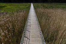 Wooden Footbridge In Wetland, Kazdanga, Latvia.