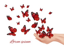 Butterfly In Hands. Flying Wings Papillon Farfalle Monarchs Many Colored Butterflies Vector Concept. Insect Flying From Human Hands Illustration