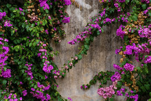 Background Of Old Stone Wall W...