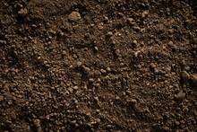 Fertile Loam Soil Suitable For...