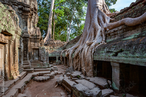 Ruins of Ta Prohm - Angkor Wat - Cambodia Canvas Print