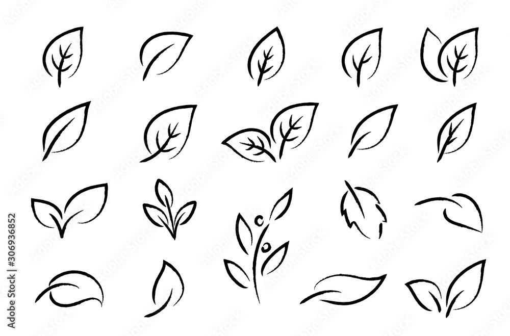 Fototapeta hand drawn black leaf branch icons eco set
