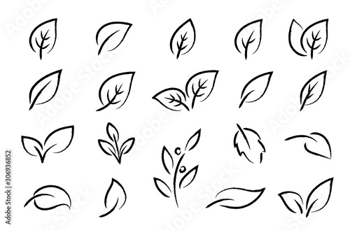 hand drawn black leaf branch icons eco set