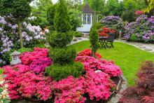Asiatischer Garten Im Frühling