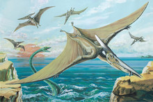 PTERANODON. One Of The Largest Ever Flying Reptiles, With A Wingspan Of Over 26ft (8m), Cretaceous, About 90 Million Years Ago.