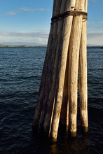 Pier Pilings Lashed Together A...