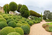 Beatuiful Landscaped Garden Wi...