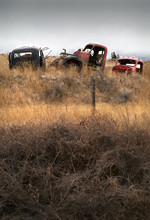Abandoned Cars Farmland. Old Abandoned Trucks In The Pacific Northwest.