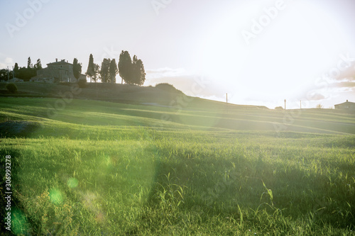 Tuscany - Landscape panorama, hills and meadow, Toscana - Italy Wallpaper Mural