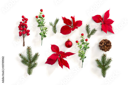 Christmas decoration. Flowers of red poinsettia, branch christmas tree, ball, cone pine, red berry on a white background. Top view, flat lay - 307001062