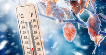 Thermometer Or Meteorology Deg...