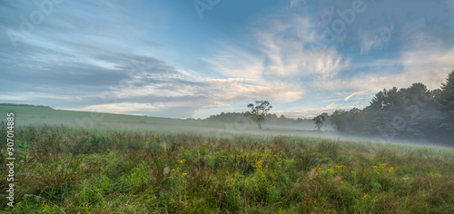 Upstate New York in Sullivan county in summer with fog on the meadow Wallpaper Mural