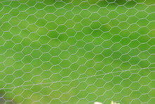 Chicken Wire Fencing, Fence Fo...