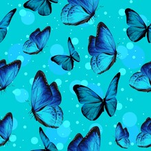 Turquise Butterflies And Blue ...