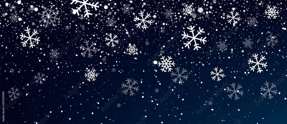Fototapeta Snow. Realistic snow overlay background. Snowfall, snowflakes in different shapes and forms. Snowfall isolated on transparent background
