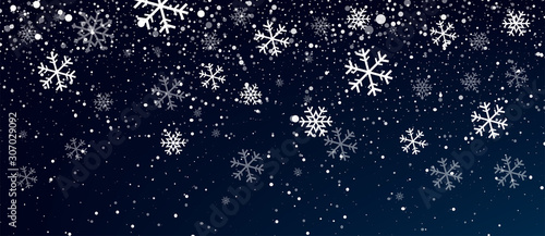 Snow. Realistic snow overlay background. Snowfall, snowflakes in different shapes and forms. Snowfall isolated on transparent background - 307029092
