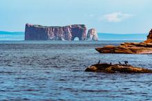 Boat Trip Around Percé Rock And Baventure Island