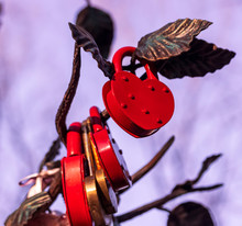 Lots Of Colorful Wedding Love Locks In Form Of Heart With Beautiful Bright Bow Knots And Ribbon On A Bridal Tree With Form Of Heart, Nuptial Tradition Of Couples
