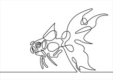 Gold Fish- Continuous Line Drawing