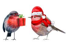 Christmas Holiday, Robin Small...