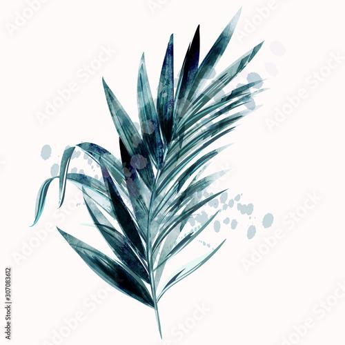 ilustracja-z-tropikalny-wektor-zielony-lisc-palmowy-w-stylu-przypominajacym-akwarele