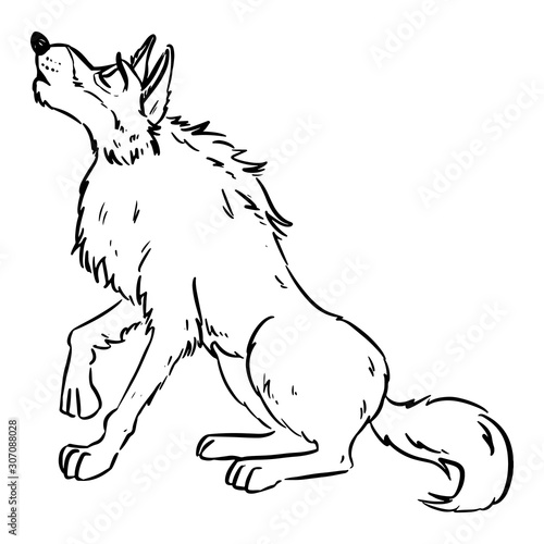 Wolf Howling On The Moon Dog Or Wolf Lineart Cartoon Illustration Canine In Lineart Style Image Wild Animal In Comic Style Buy This Stock Vector And Explore Similar Vectors At Adobe