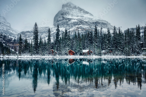 Wooden lodge in pine forest with heavy snow reflection on Lake O'hara at Yoho na Fototapeta