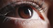 Close up shot of beautiful female eye with makeup and dark brown iris looking around and blinking - beauty concept makro 4k footage