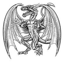 Drawing Of A Winged Dragon Fan...