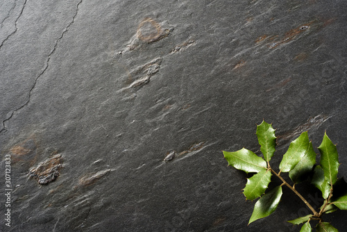 Photo holm oak leaves on black slate background