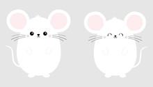 White Mouse Set. Happy New Yea...