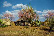 Basotho Hut, Lesotho's Traditional House