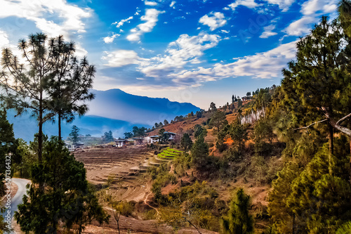 Terraced rice field withs rural houses and group of white prayer traditional buddhist flags in Punakha, Bhutan in the Himalayas in the early morning in spring.