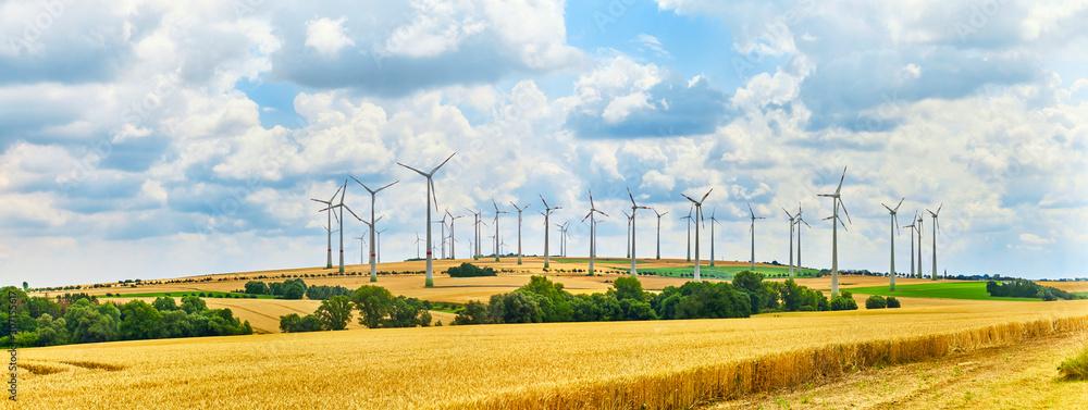 Fototapeta A big wind farm in north Germany