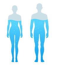 人体の水分割合の図 男女