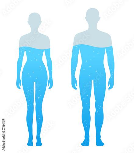 Fotografie, Obraz  人体の水分割合の図 男女