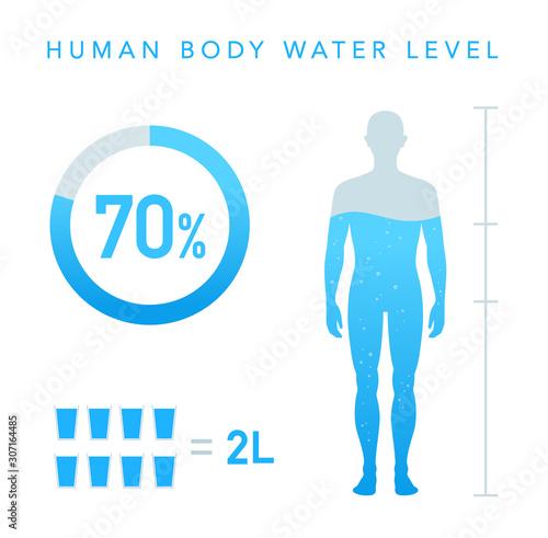 Fototapeta  人体の水分割合の図 水のアイコン
