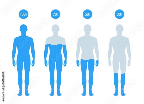 Fototapeta 人体の水分割合の図