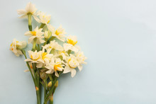 Bouquet Of White Narcissus Flowers