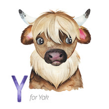 Watercolor Animals Alphabet.Learn Letters With Funny Animals. Cute Yak For Y Letter.  Perfect For Education, Baby Shower, Children Prints Or Room Decor, Template Cards, Books And Much More