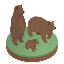 Brown Bears Isometric Illustration. Stock Vector. Two Adult Bears And Their Cub. Bear Standing On His Hind Legs.