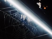 Spider Web At Night Under Neon...