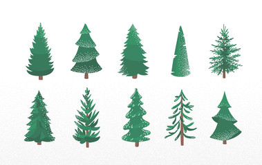Set of fir tree with snow texture. Pine and spruce xmas vector illustration isolated on white background. Simple flat cartoon green plant elements for christmas decorating