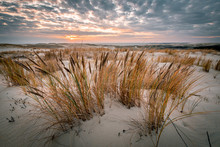 Parnidis Sand Dune In Sunset. Curonian Spit, Nida City, Lithuania.